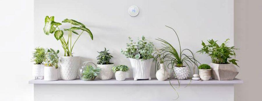 """""""Nest"""" pametni termostat stiže i na evropsko tržište"""