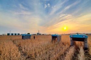 Novi Alphabetov projekat Mineral rješava pitanje održive proizvodnje hrane